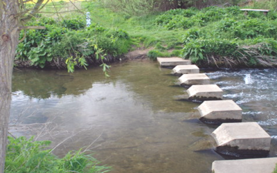 Five stepping stones to increased signups
