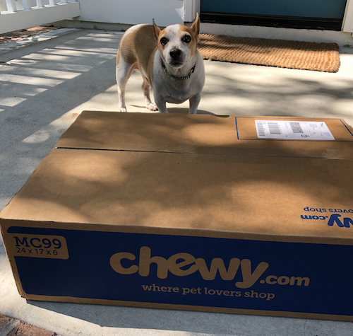 dog_with_chewy.com_box